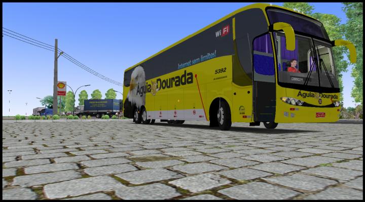 Paradiso G6 1200_Águia dourada