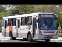 Neobus Mega Plus VolksBus 17.230 OD Padrão Maceio Real Alagoas [+Download]