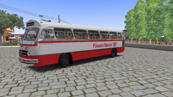 O321 Passaro marron2