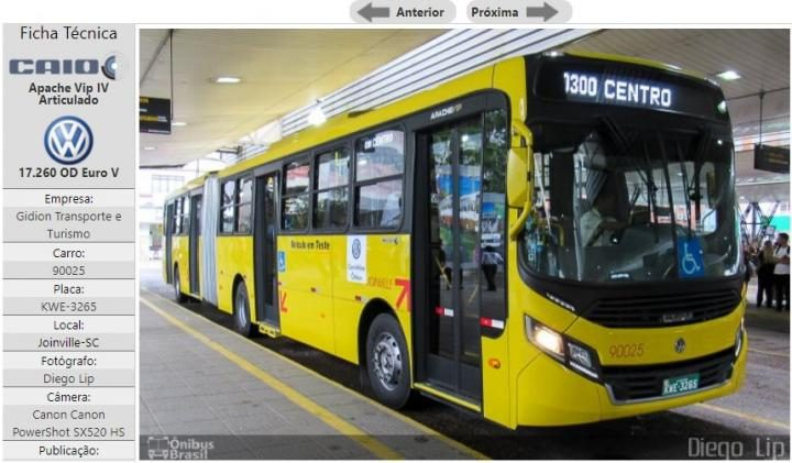 bus real2